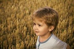 Żartuje enyoj szczęśliwego dzień Chłopiec z śliczną twarzą, blondyn na rżniętej trawie Obraz Stock