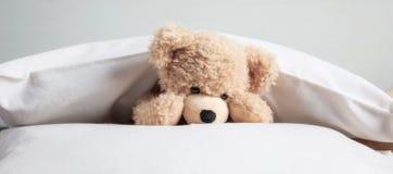Żartuje pora snu Śliczny miś pluszowy bawić się z poduszkami w łóżku, sztandar fotografia stock