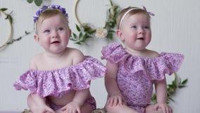 Żeńscy bliźniacy w menchii ubraniach pozuje na sesja zdjęciowa. na tle ściana z wystrojem zdjęcie wideo