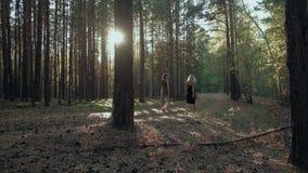 Żeńscy przyjaciele chodzą na zmierzchu w lesie zdjęcie wideo