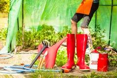 Żeńscy rolnika i ogrodnictwa narzędzia w ogródzie Zdjęcie Stock