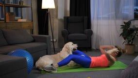 Żeńscy stażowi abdominals pod kontrolą pies zdjęcie wideo
