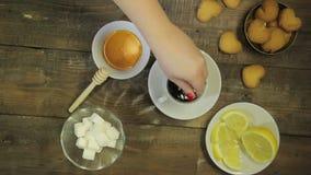 Żeńska łyżka warząca ręki fertania świeża herbata na widok zbiory