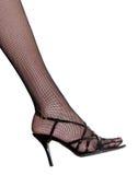 żeńska noga Obraz Stock