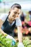Żeńska ogrodniczka Zdjęcia Royalty Free