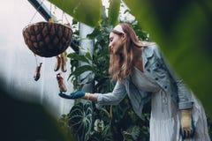 Żeńska ogrodniczka bierze opiekę rośliny Obraz Royalty Free