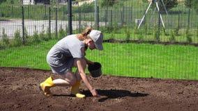 Żeńska ogrodniczka wręcza wysiewnemu flancowaniu nowych trawa gazonu ziarna w domowym jardzie zbiory