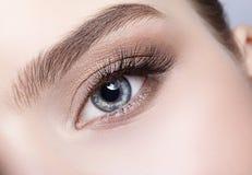 Żeńska oko strefa, brwi z dnia makeup i Fotografia Stock