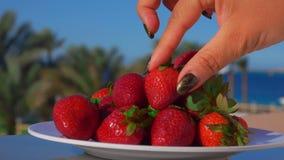Żeńska ręka bierze wielkiej truskawki od talerza zdjęcie wideo