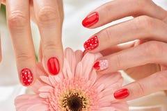 Żeński delikatny manicure i kwiat obraz royalty free