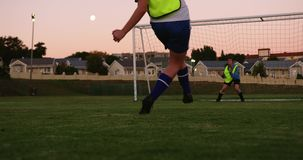 Żeński gracz piłki nożnej osiągania cel podczas gdy pastuch próby łapać je na boisku do piłki nożnej 4K zdjęcie wideo