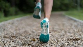 Żeński jogger na śladzie między drzewami fotografia royalty free