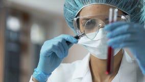 Żeński medyczny pracownik patrzeje badanie krwi przez powiększać - szkło, analiza zdjęcie wideo