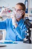 Żeński naukowa badacz prowadzi eksperyment w labora zdjęcie royalty free