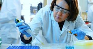 Żeński naukowa doświadczalnictwo w laboratorium 4k zbiory