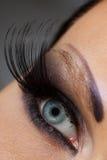 Żeński oko Obrazy Stock