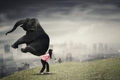 Żeński przedsiębiorca podnosi słonia na ciężkim Zdjęcie Stock