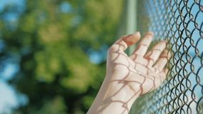 Żeński ręki chodzenie wzdłuż powierzchni siatka Ręka młoda kobieta metalu wzruszający druciany ogrodzenie Dziewczyny odprowadzeni zbiory wideo