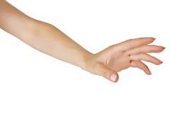 żeński rozciągająca żeńska ręka Fotografia Royalty Free