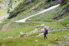 Żeński turystyczny odprowadzenie w pięknych zielonych trawiastych łąkowych pobliskich skalistych górach w Rumunia Zdjęcie Royalty Free