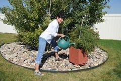 Żeńskie piękna podlewania rośliny zdjęcie royalty free