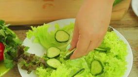 Żeńskie ręki kłaść plasterki ogórki w talerzu z zielonymi sałata liśćmi zbiory wideo