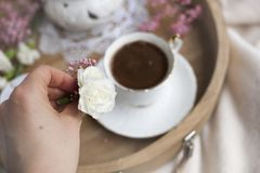 Żeńskie ręki trzymają białego kwiatu menchii i Śniadanie w łóżku kawa doprawiał Delikatni lekcy kolory romans miejsce tekst obrazy stock