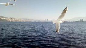 Żeglować na ferryboat w Izmir Turcja - wideo zbiory
