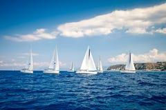 żeglowanie żagle wysyłają biały jachty Obrazy Stock