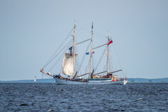 Żeglowanie statek Zawisza Czarny żegluje folował morze po tym jak finał Wysocy statki Ściga się 2017 w Ste Trzebiez Polska, Sierp Obraz Royalty Free