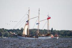 Żeglowanie statek Zawisza Czarny żegluje folował morze po tym jak finał Wysocy statki Ściga się 2017 w Ste Trzebiez Polska, Sierp Obrazy Stock