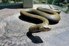 Żelazna wąż rzeźba fotografia stock