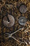 Żelazny kaput fotografia stock