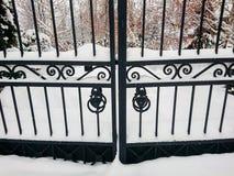 Żelazo bramy przy wejściem miasto park mroczny dzień niebieski oddział stać się drzew zimy śnieżną nieba Dryfy śnieg zdjęcia stock