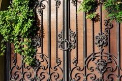 Żelazo fałszował bramę z rdzą z zieloną rośliną zdjęcia stock