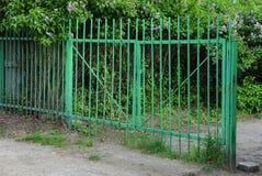 Żelazo gałązki w zielonej roślinności i bramy zdjęcie royalty free