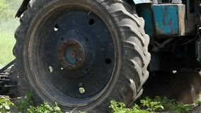 Żmudny ciągnik kultywuje pole z zielonymi roślinami w lecie zbiory wideo