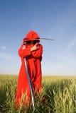 żniwiarki czerwieni serie Obrazy Stock
