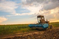 Żniwiarz maszyna zbierać pszenicznego pola działanie Fotografia Stock