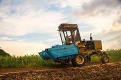 Żniwiarz maszyna zbierać pszenicznego pola działanie Obraz Stock