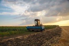 Żniwiarz maszyna zbierać pszenicznego pola działanie Zdjęcia Royalty Free