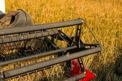 Żniwiarza rolnictwa maszyna i zbierać w ryż odpowiadamy działanie obraz royalty free