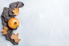 Żniwo spadku jesieni pojęcie dojrzały soczysty granatowiec obrazy stock