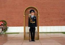 Żołnierz strażnik honor obrazy royalty free