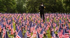 Żołnierz w polu flagi obrazy royalty free