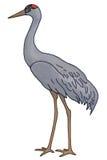 żuraw ilustracji