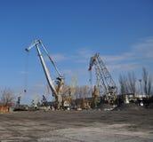 żurawia duży port Zdjęcie Royalty Free