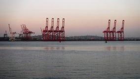 żurawia wschód słońca Obraz Stock