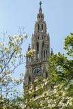 Żyła Rathaus zdjęcie stock