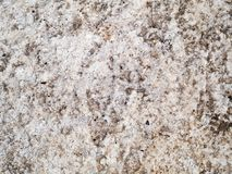 Żyłkowana kamienna tekstura Zdjęcia Royalty Free